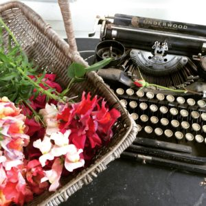 Typewriter Planter