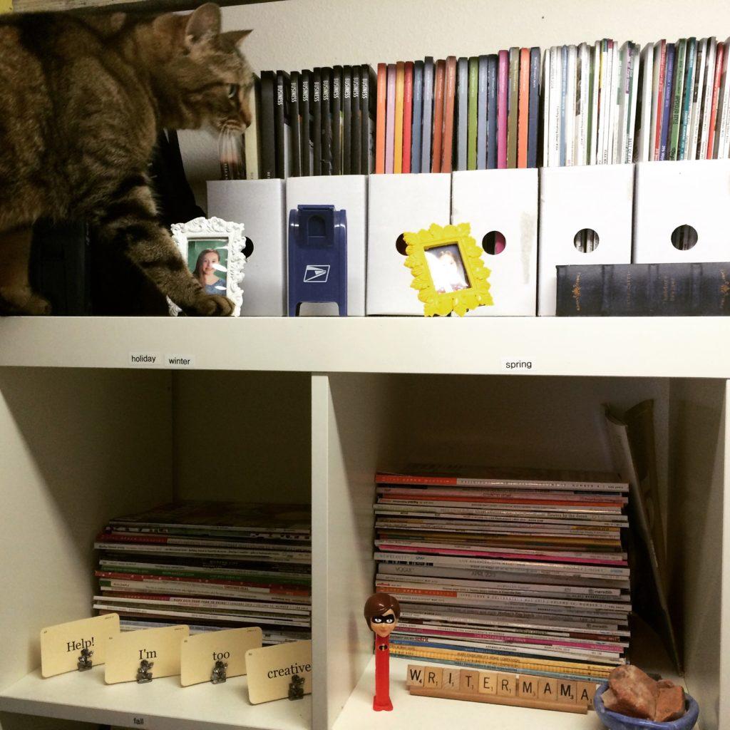 Christina Katz' closet magazine storage with kitty cameo